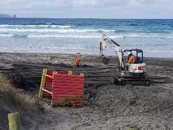 Hawaiki Cable beach digger-446